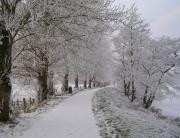 Winter_Scene,_Bann_Boulevard,_Portadown_6_-_geograph.org.uk_-_1656358 (1)